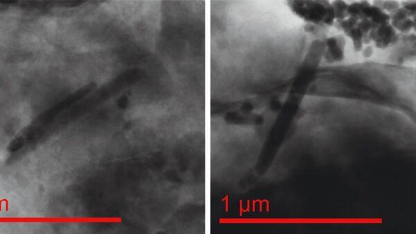 Mikroskopijne nagromadzenia magnetyczne - Sputnik Polska