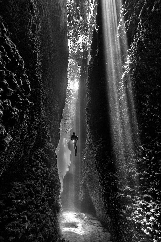 Zdjęcie austriackiego fotografa Diana Fernie, który zwyciężył w kategorii Black and White konkursu The Underwater Photographer of the Year 2021