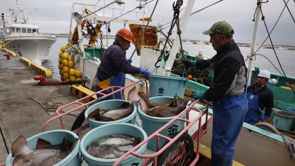 Połów ryb, Japonia - Sputnik Polska