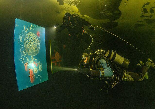 Pierwsza galeria sztuki pod lodem w Morzu Białym za kołem podbiegunowym
