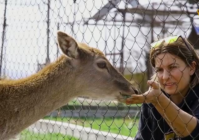 Rosjanin wychowuje dzikie zwierzęta