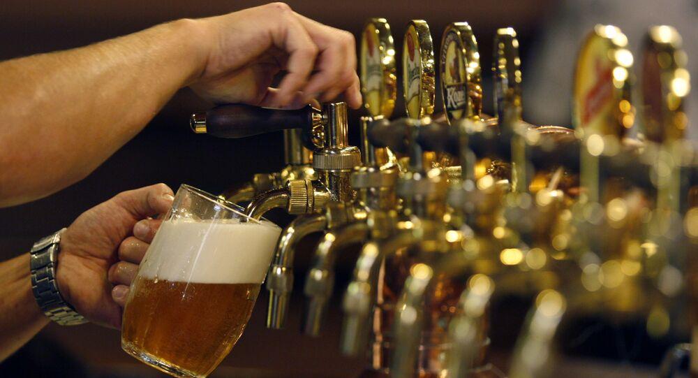 Barman nalewa piwo w czeskim Pilźnie