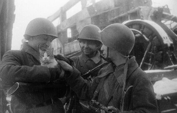 """""""Pokojowe wspomnienia"""". Stalingrad, 1943 rok - Sputnik Polska"""