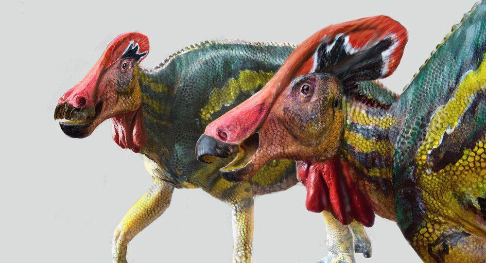 Dinozaur Tlatolophus galorum