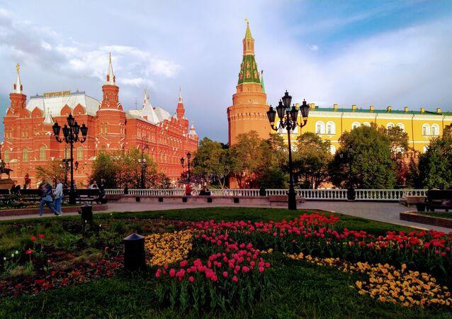 Kwitnące tulipany w Ogrodzie Aleksandrowskim, Kreml