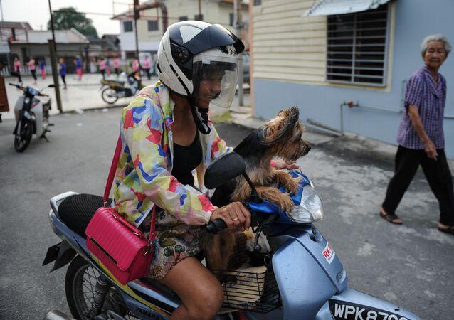 Mieszkanka Malezji ze swoim psem