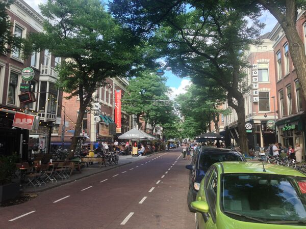 Ulica Witte de Withstraat w Rotterdamie - Sputnik Polska