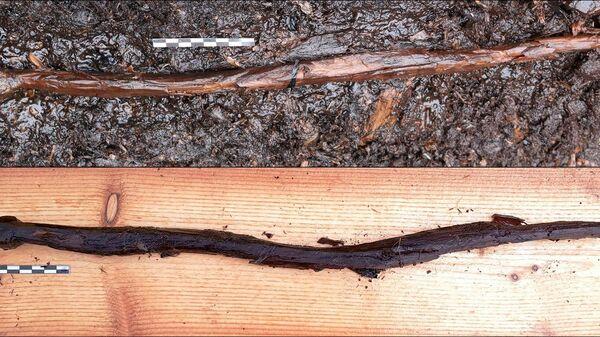 Фигурка змеи, найденная в городище Ярвенсуо - Sputnik Polska