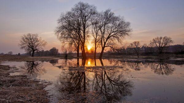 Снимок Апельсиновый закат на Москве-реке Анны Тыщенко, ставший одним из победителей фотоконкурса «Моя Планета. Россия в деталях» - Sputnik Polska