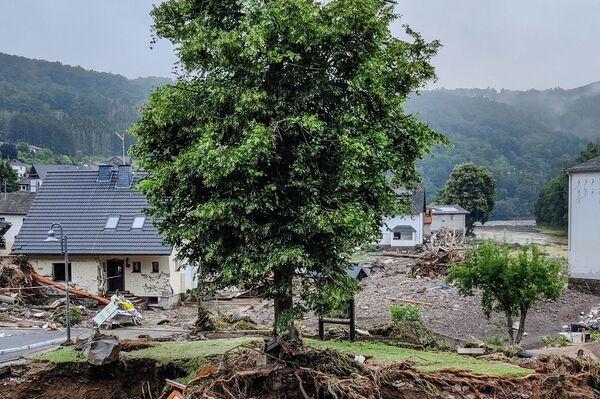 Zdjęcie drzewa po powodzi w Schuld w Niemczech 16 lipca 2021 r.  - Sputnik Polska