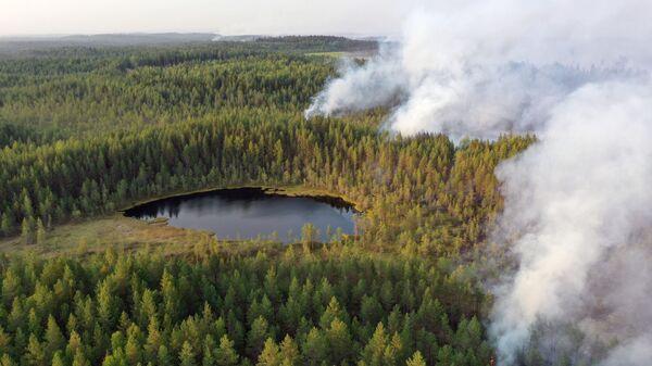 Горящие леса в районе Сямозера в Пряжинском районе Карелии - Sputnik Polska