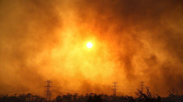 Дым над лесом вокруг Манавгата - Sputnik Polska