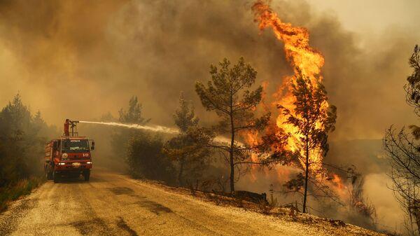 Пожарный тушит лесной пожар возле города Манавгат, к востоку от курортного города Анталия, Турция - Sputnik Polska