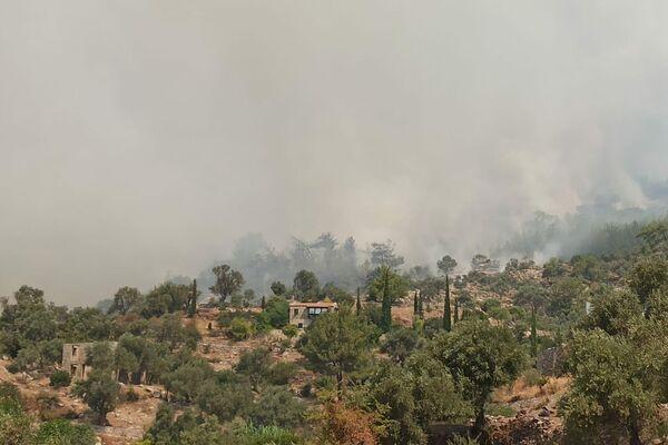 Pożary w południowo-zachodniej Turcji w prowincji Muğla - Sputnik Polska