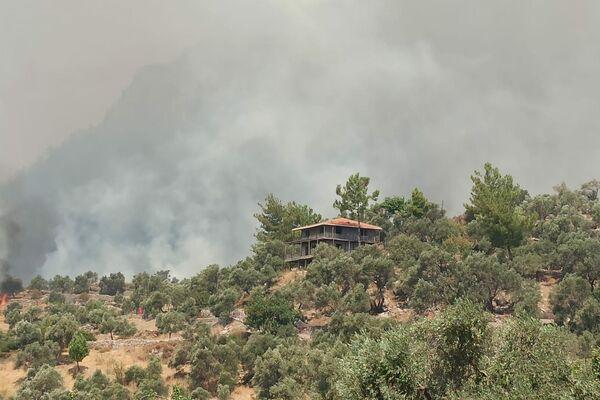 Płonące lasy w Bodrumie, w południowo-zachodniej Turcji w prowincji Muğla - Sputnik Polska