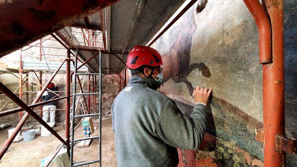 Большая фреска сада Дома Цеи в Помпеях во время реставрации - Sputnik Polska
