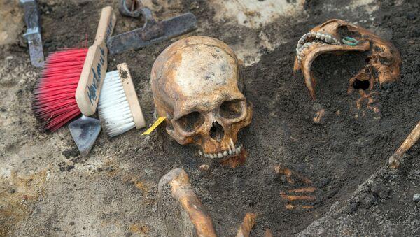 Szczątki żołnierzy radzieckich, którzy walczyli na froncie II wojny światowej, znalezione w czasie prac wykopaliskowych na północnym-wschodzie Niemiec - Sputnik Polska
