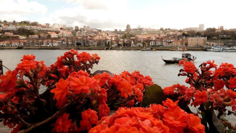 Rzeka Duero w Portugalii