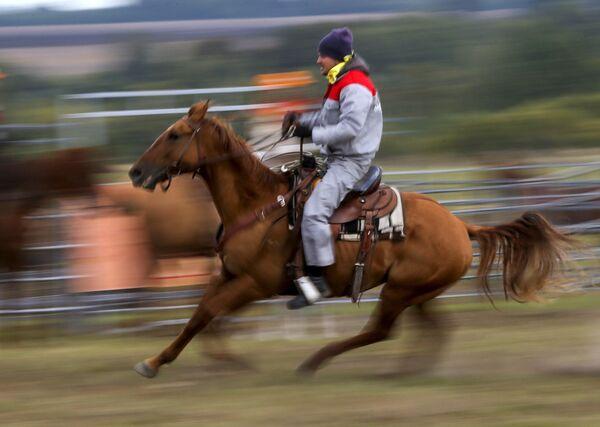 Uczestnik zawodów Rosyjskie rodeo pod Briańskiem - Sputnik Polska
