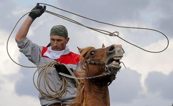 Uczestnik Rosyjskiego rodeo pod Briańskiem - Sputnik Polska
