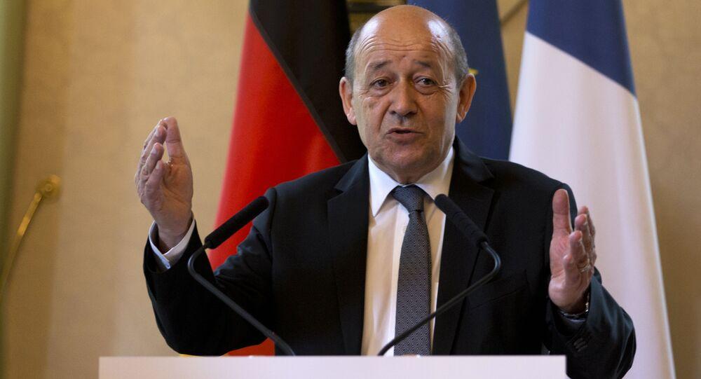 Minister obrony Francji Jean-Yves Le Drian