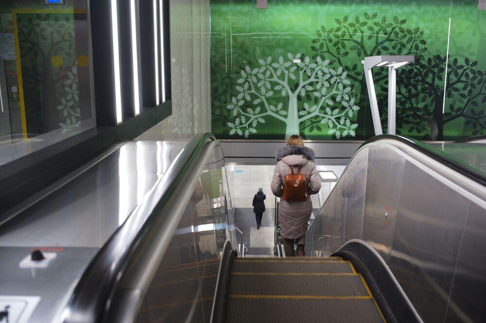 Stacja Ramenki