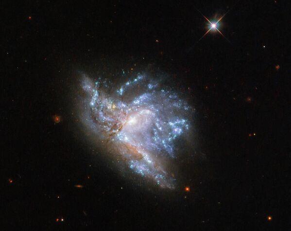 Zderzające się ze sobą galaktyki PGC 57039 i PGC 200329 w gwiazdozbiorze Herkulesa - Sputnik Polska
