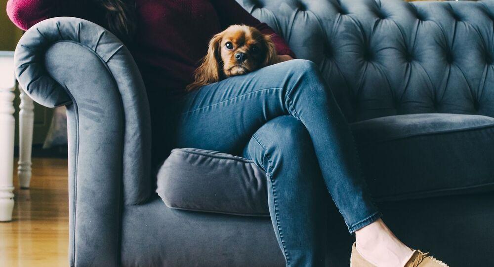 Dziewczyna w jeansach z psem