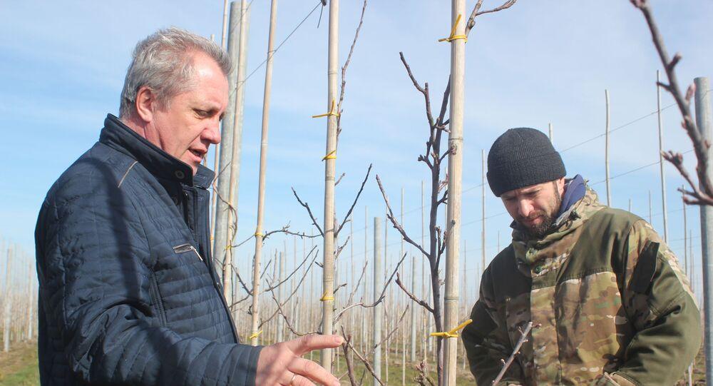 Iwan Filippenko z synem Romanem w sadzie jabłoniowym