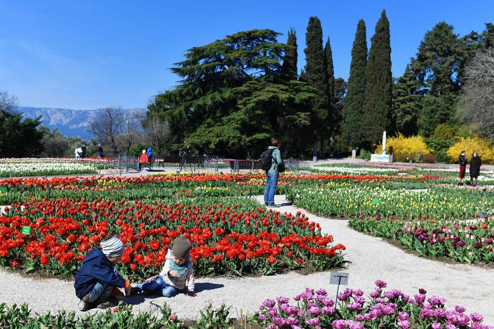Ludzie odwiedzający Nikitski Ogród Botaniczny na Krymie