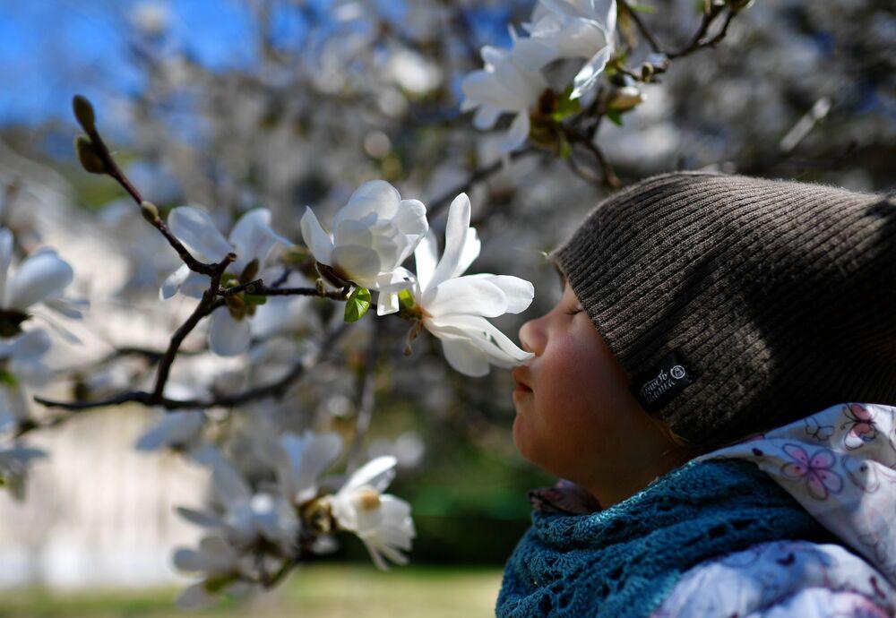 Chłopiec w Nikitskim Ogrodzie Botanicznym na Krymie
