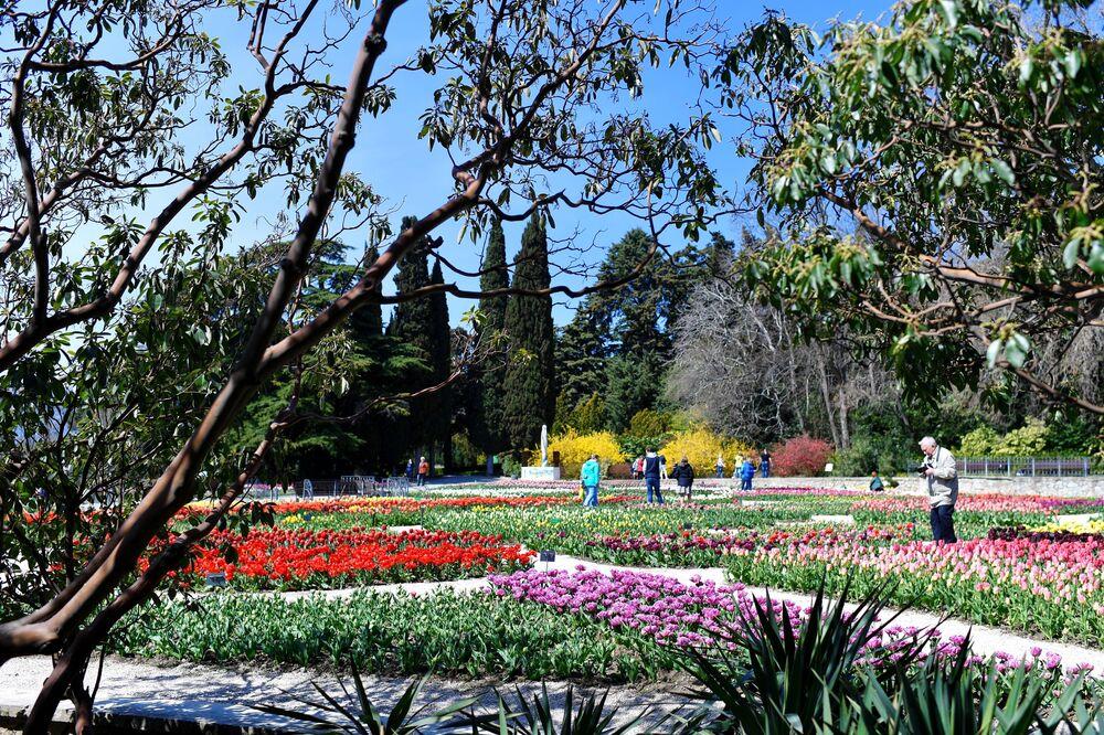 Nikitski Ogród Botaniczny na Krymie