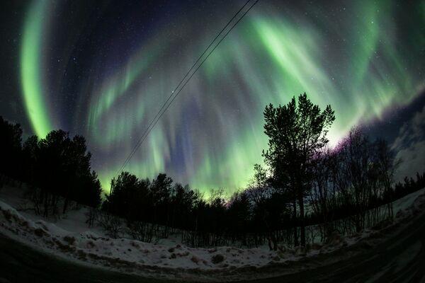 Zorza polarna nad obwodem murmańskim - Sputnik Polska