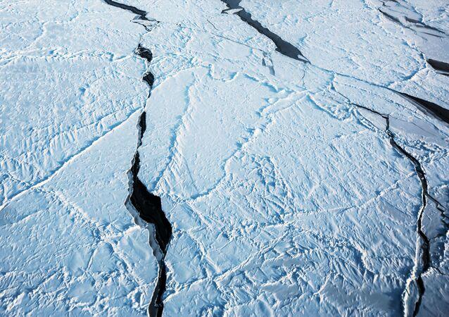 obecność w Arktyce