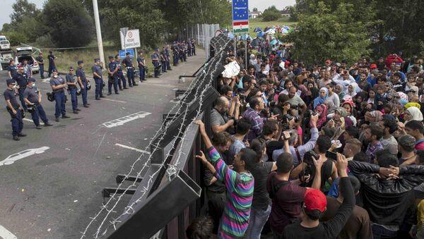 Migranci na granicy węgiersko-serbskiej - Sputnik Polska
