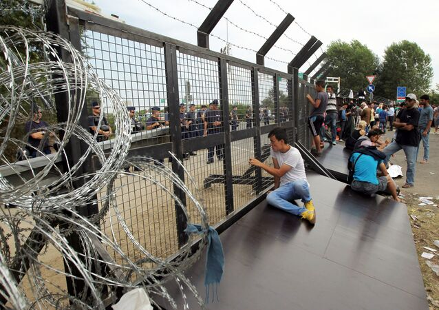 Uchodźcy na serbsko-węgierskiej granicy
