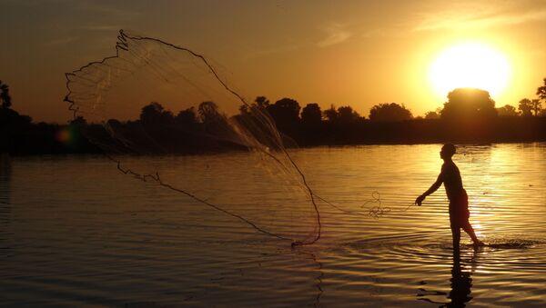 Rzeka Niger - Sputnik Polska