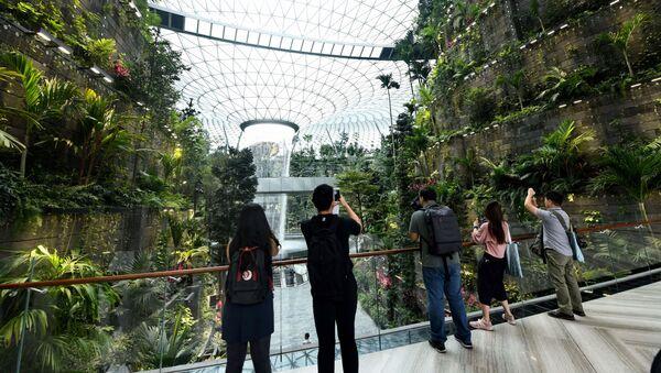 Port lotniczy Singapur-Changi - Sputnik Polska