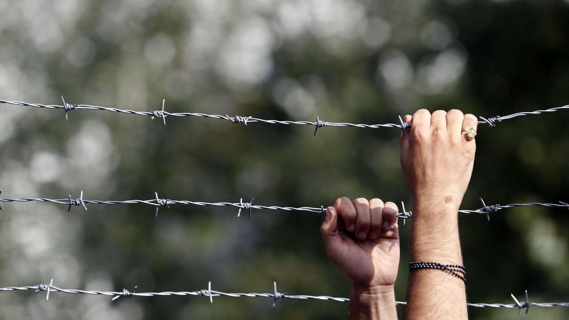 Ogrodzenie z drutu kolczastego na węgierskiej granicy - Sputnik Polska, 1920, 07.08.2021