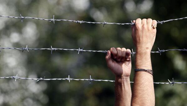 Ogrodzenie z drutu kolczastego na węgierskiej granicy - Sputnik Polska