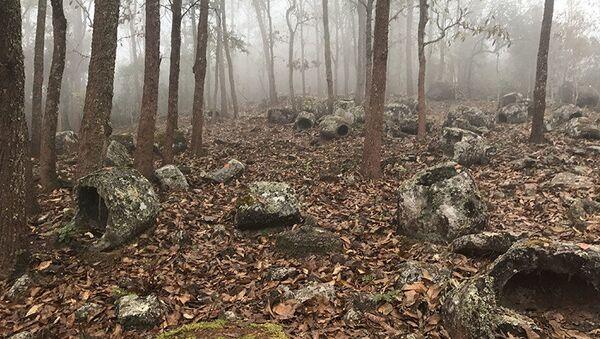 Megalityczne budowle w postaci masywnych kamiennych naczyń w lasach Laosu - Sputnik Polska