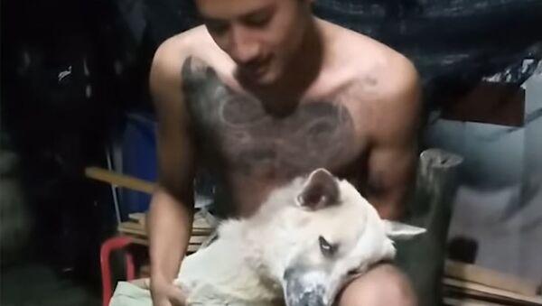 Kadr z wideo o psie, który nie cierpi kąpieli - Sputnik Polska