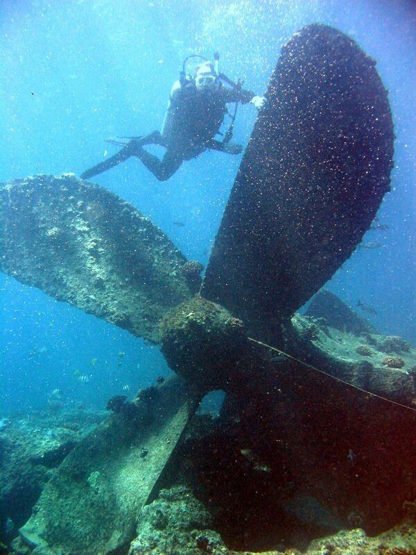 Zatopiony okręt. Atol Atol Pearl i Hermes, Hawaje - Sputnik Polska