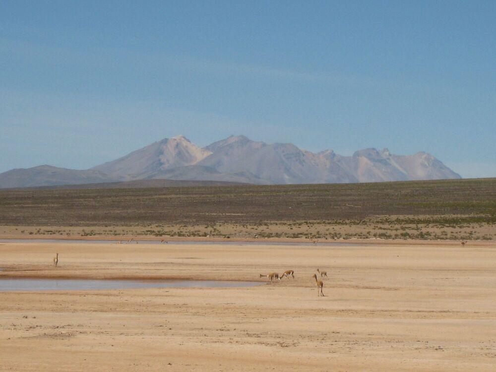 Altiplano – płaskowyż w Andach Środkowych