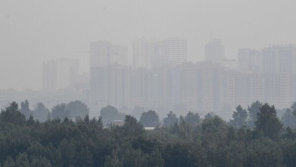 Smog w Nowosybirsku spowodowany pożarami lasów w Kraju Krasnojarskim - Sputnik Polska