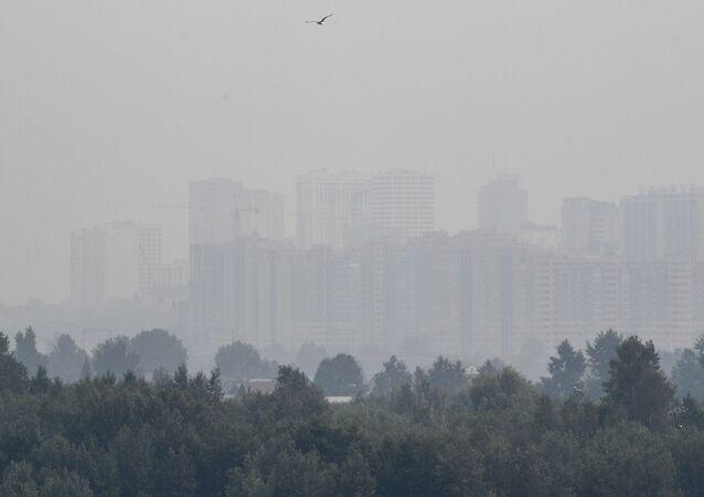 Smog w Nowosybirsku spowodowany pożarami lasów w Kraju Krasnojarskim