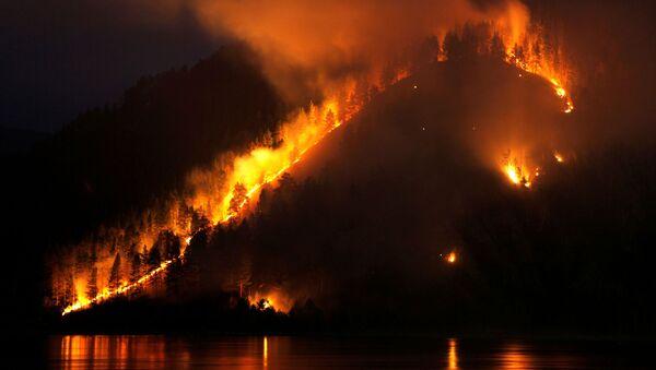 Pożar lasu w Kraju Krasnojarskim - Sputnik Polska