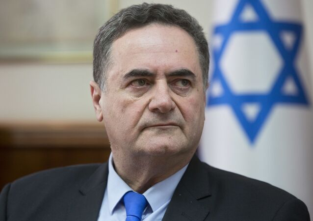 Minister spraw zagranicznych Izraela Jisrael Kac  na posiedzeniu gabinetu ministrów