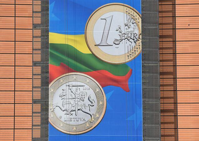 Baner z monetą o nominale 1 euro z okazji wejścia Litwy do strefy euro