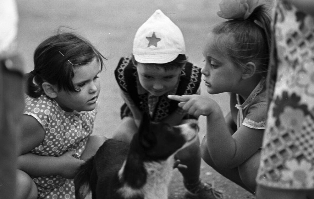 Dzieci bawią się z psem, 1976 rok